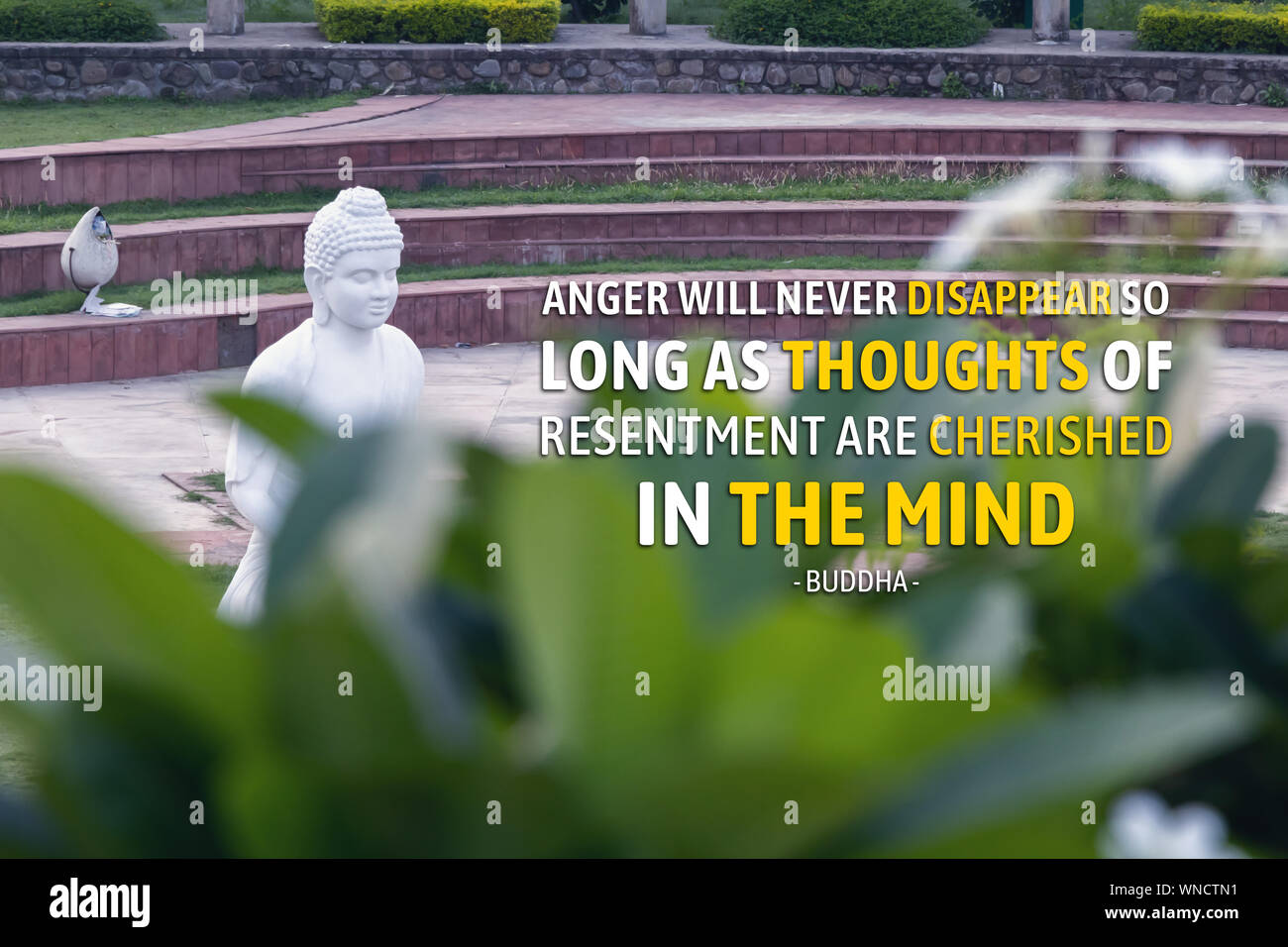 Anger will never disappear so long as thoughts of resentment are cherished in the mind - buddha Stock Photo