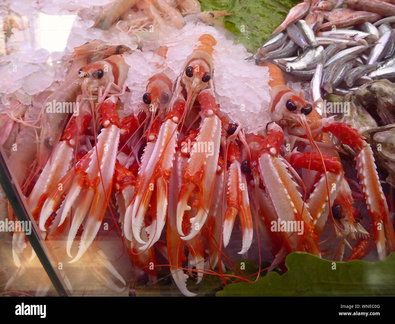 Close-up Of Fish For Sale Stock Photo