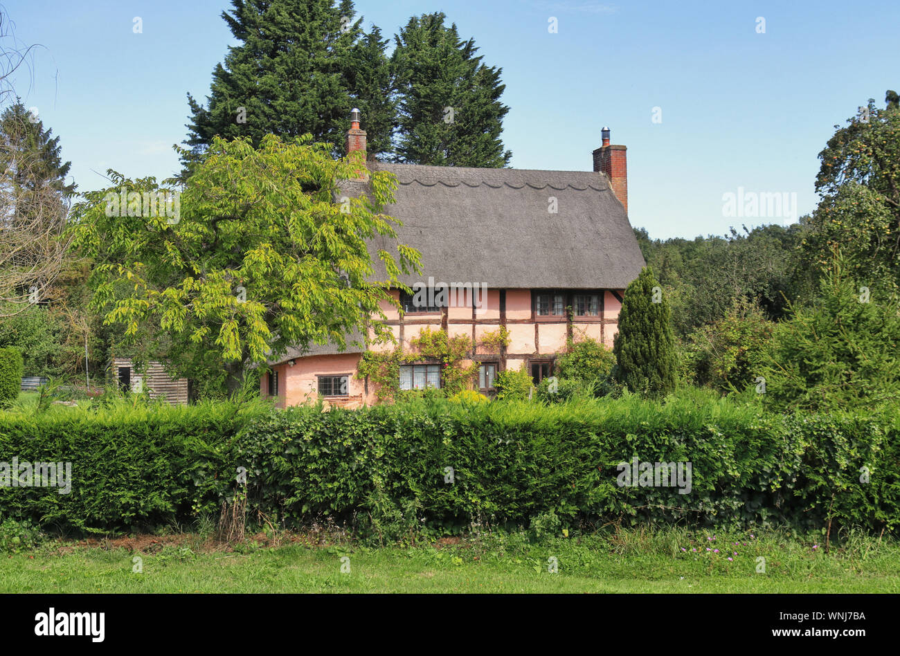 Traditional Thatched English timber framed Village Cottage and garden Stock Photo