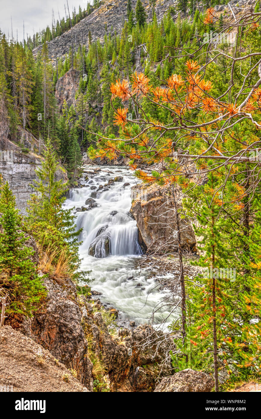 Firehole Falls On Firehole River In Yellowstone National