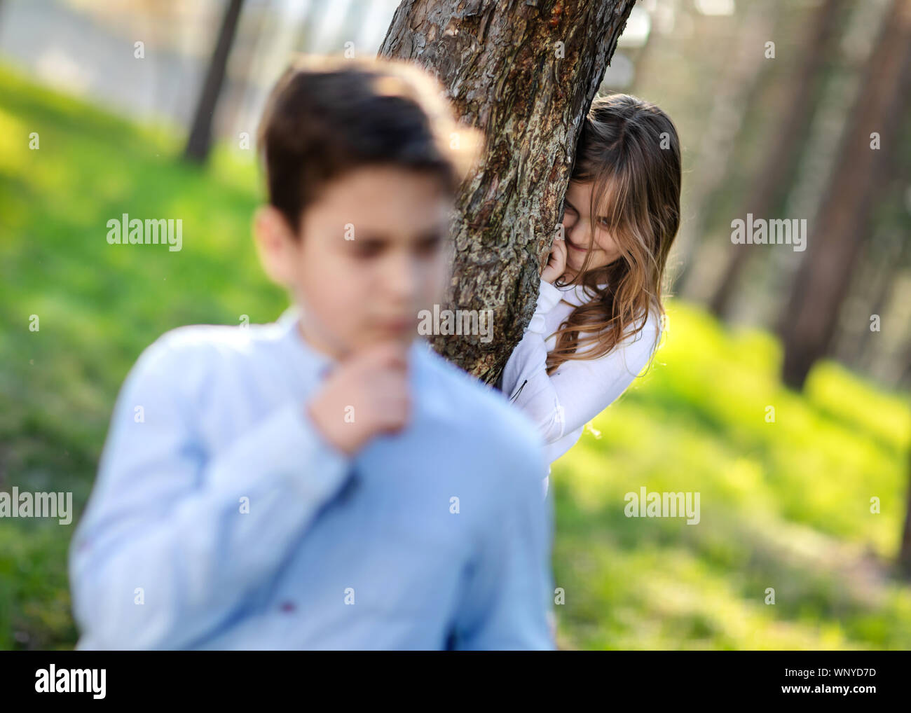 Hide Seek Kids: Children Child Young Boy Watching Stock Photos & Children