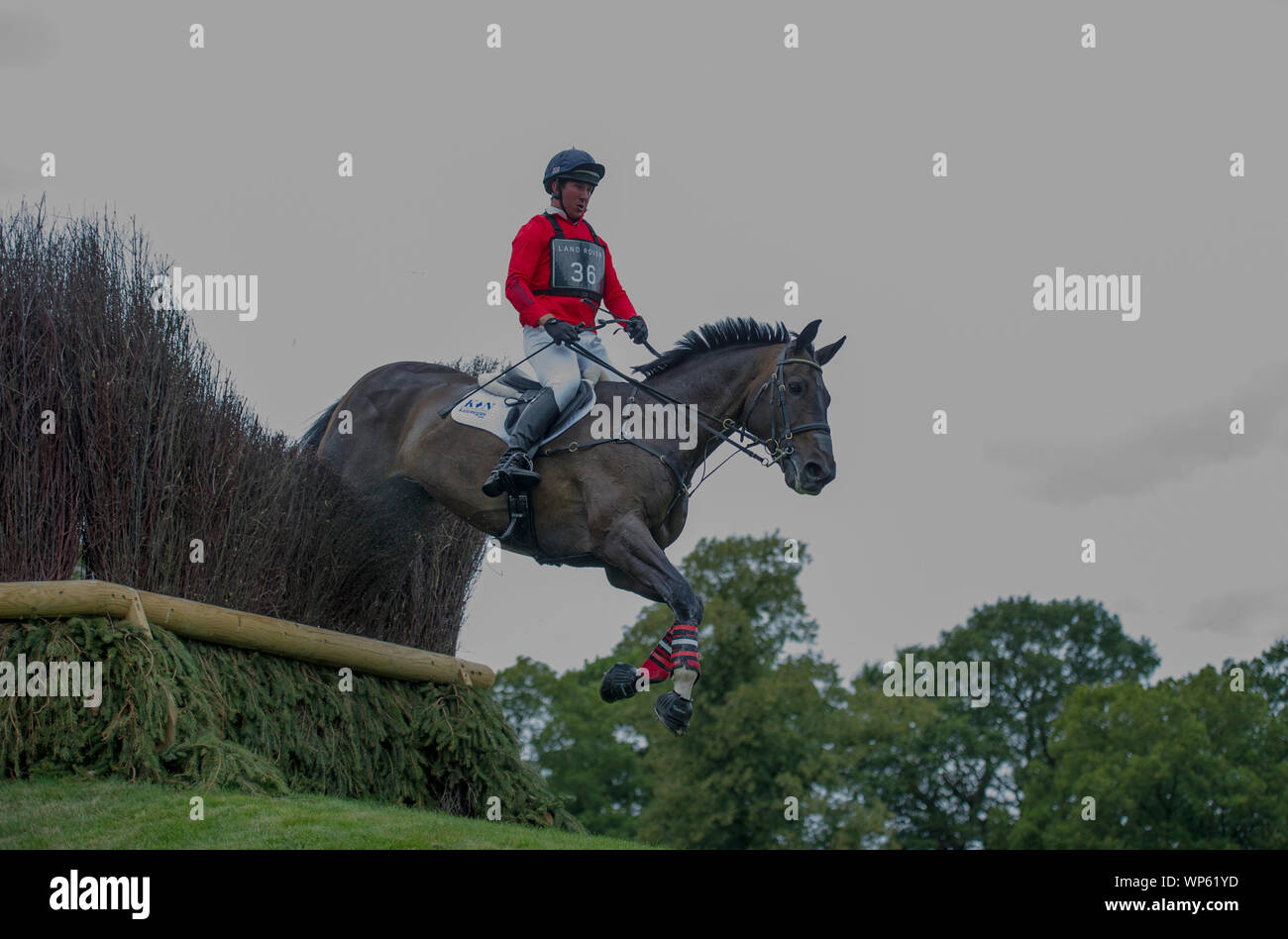 Stamford, UK, Saturday 7th September, 2019. David Doel riding Shannondale Quest during the Land Rover Burghley Horse Trials,  Cross Country phase. © Julie Priestley/Alamy Live News Stock Photo