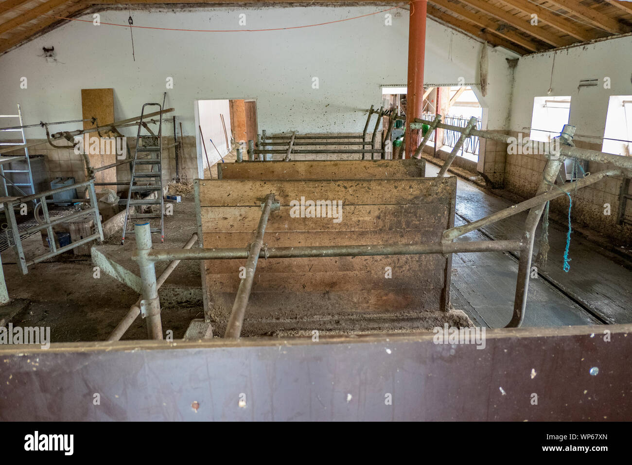 Overview of an empty cowshed with boxes Stock Photo