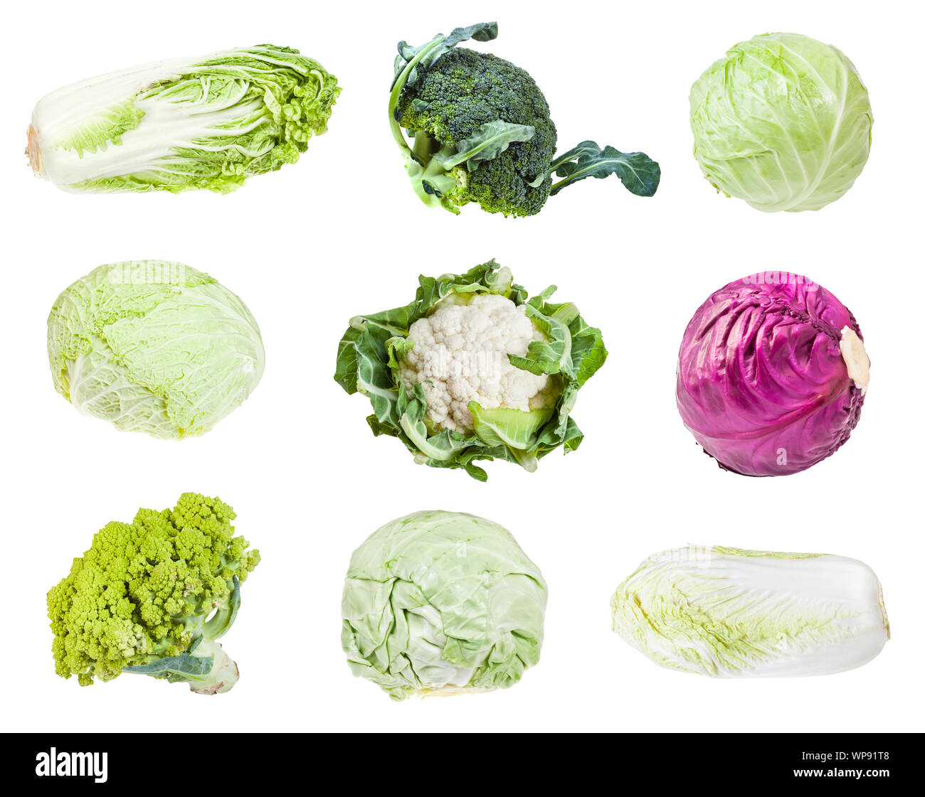 Various Headed Cabbages Romanesco Broccoli Cauliflower White Cabbage Red Cabbage Napa Cabbage Savoy Cabbage Isolated On White Background Stock Photo Alamy