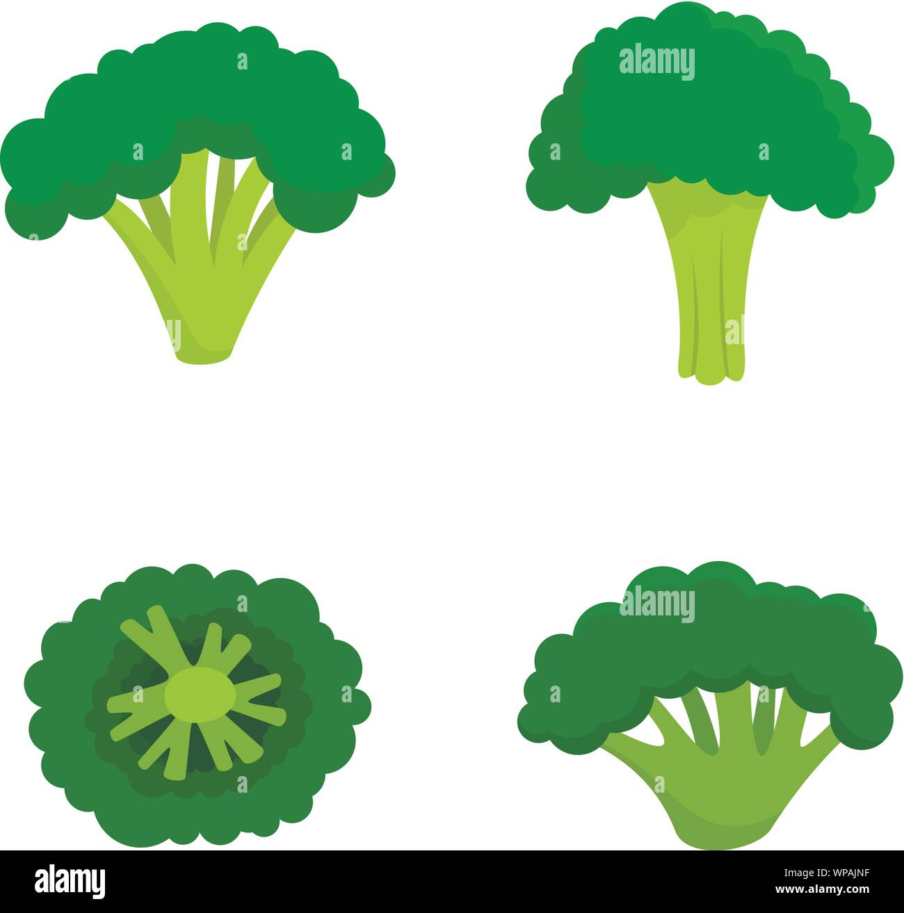 green broccoli icon set flat set of green broccoli vector icons for web design stock vector image art alamy https www alamy com green broccoli icon set flat set of green broccoli vector icons for web design image271912187 html
