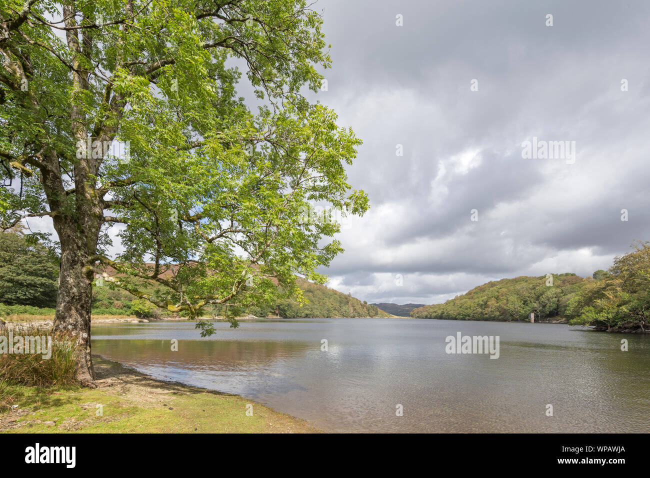Llyn Cynwch lake on the popular Precipice Walk, Snowdonia National Park, North Wales, UK Stock Photo