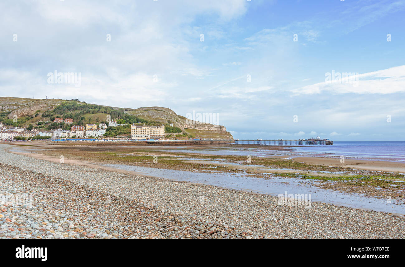 A view of Llandudno's curving shoreline and pier. The Great Orme headland is in the distance and a blue sky is above. Stock Photo