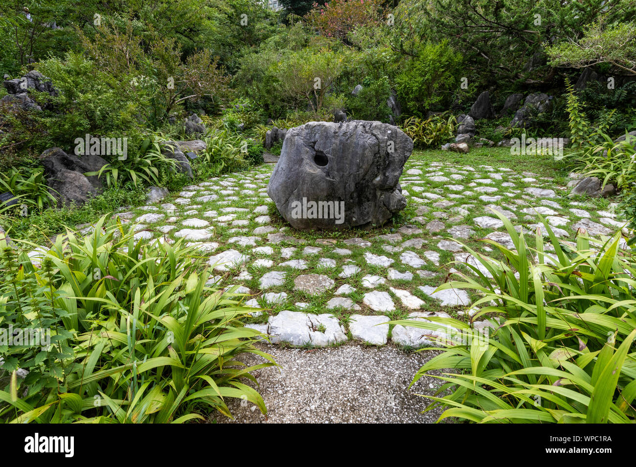 Makino Botanical Garden was created to honor the achivement of Dr Tomitaro Makino the father of plant taxonomy in Japan.  In addition to its vast gard Stock Photo