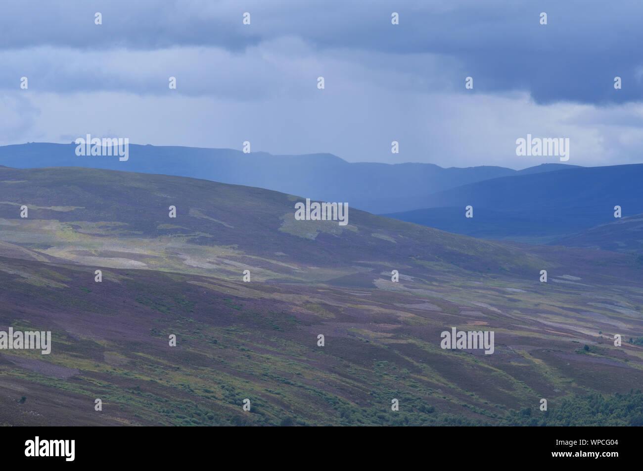 Moorland along the Sgor Buidhe trek near Ballater, Cairngorm mountains, Scotland Stock Photo