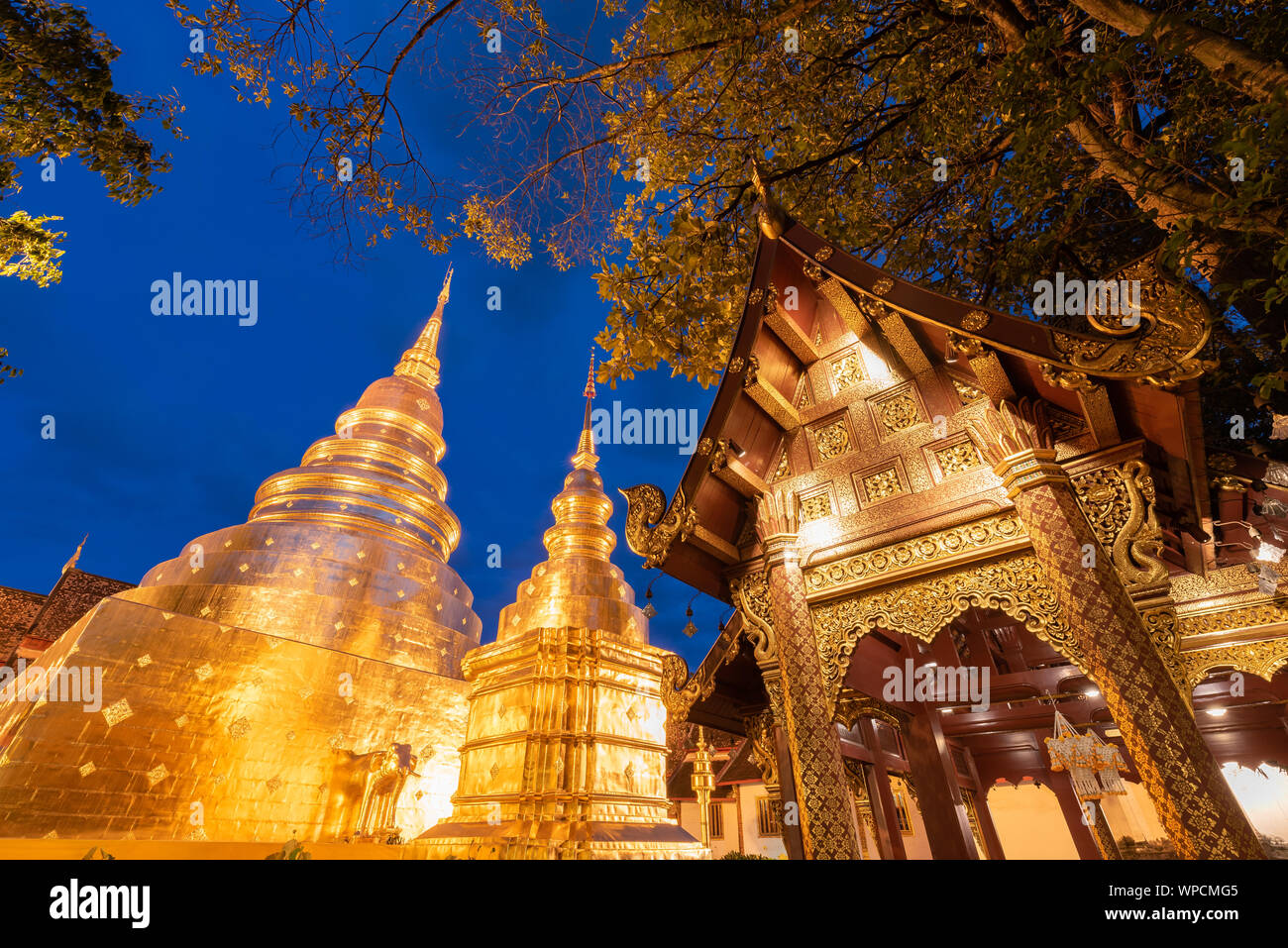Golden pagoda in blue night sky. Phra Singh temple. Chiang Mai, Thailand. Stock Photo