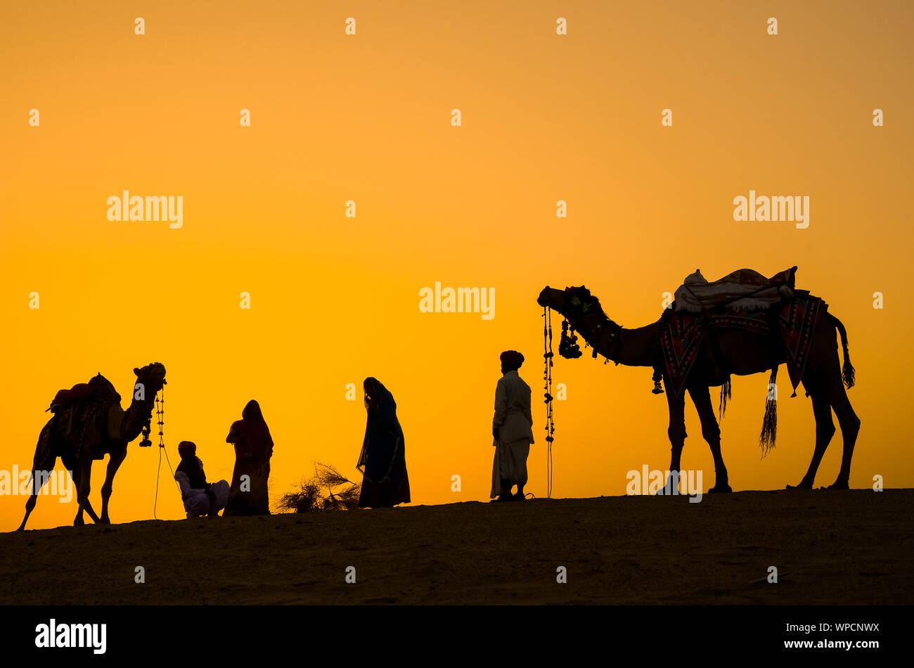 Jaisalmer, rajasthan, india - april 18th, 2018: indian cameleers (camel drivers) with camels silhouettes in dunes of Thar desert on sunset. Stock Photo