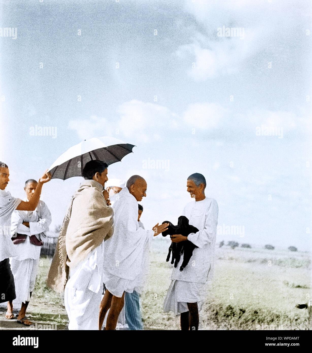 Mahatma Gandhi fondling newborn goat, Wardha, Maharashtra, India, Asia, September 1938 Stock Photo