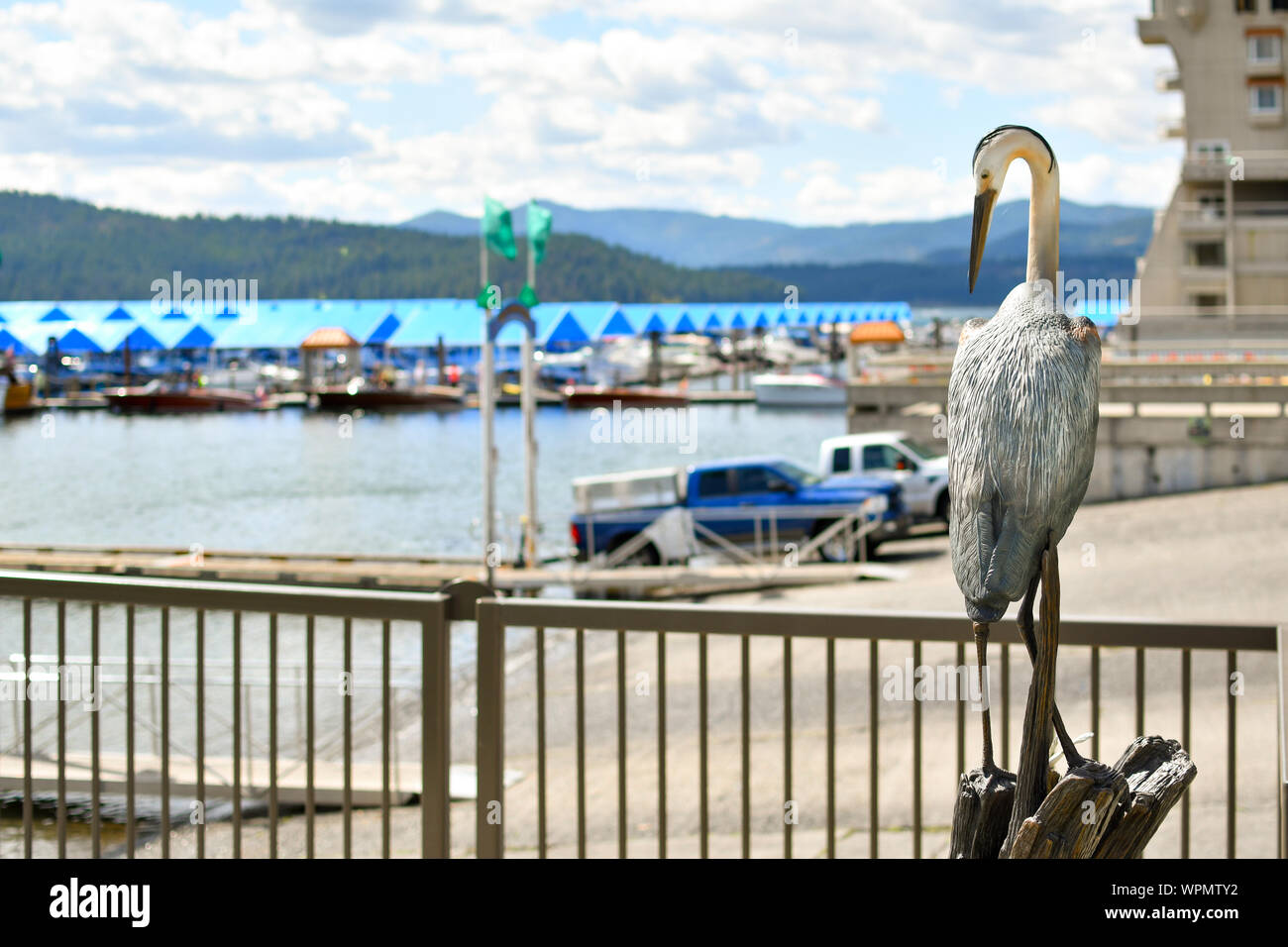 A realistic pelican statue figurine sits and watches over the boat launch and floating boardwalk at the Coeur d'Alene Idaho resort marina Stock Photo