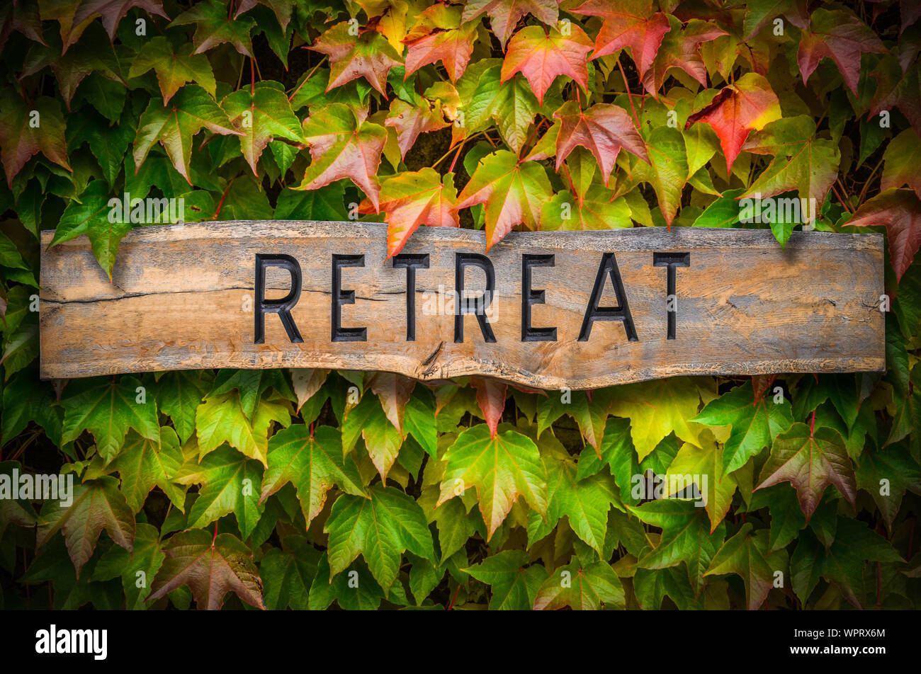 Rustic Wooden Carved Sign For A Spiritual Retreat Against A Beautiful Leafy Backdrop Stock Photo
