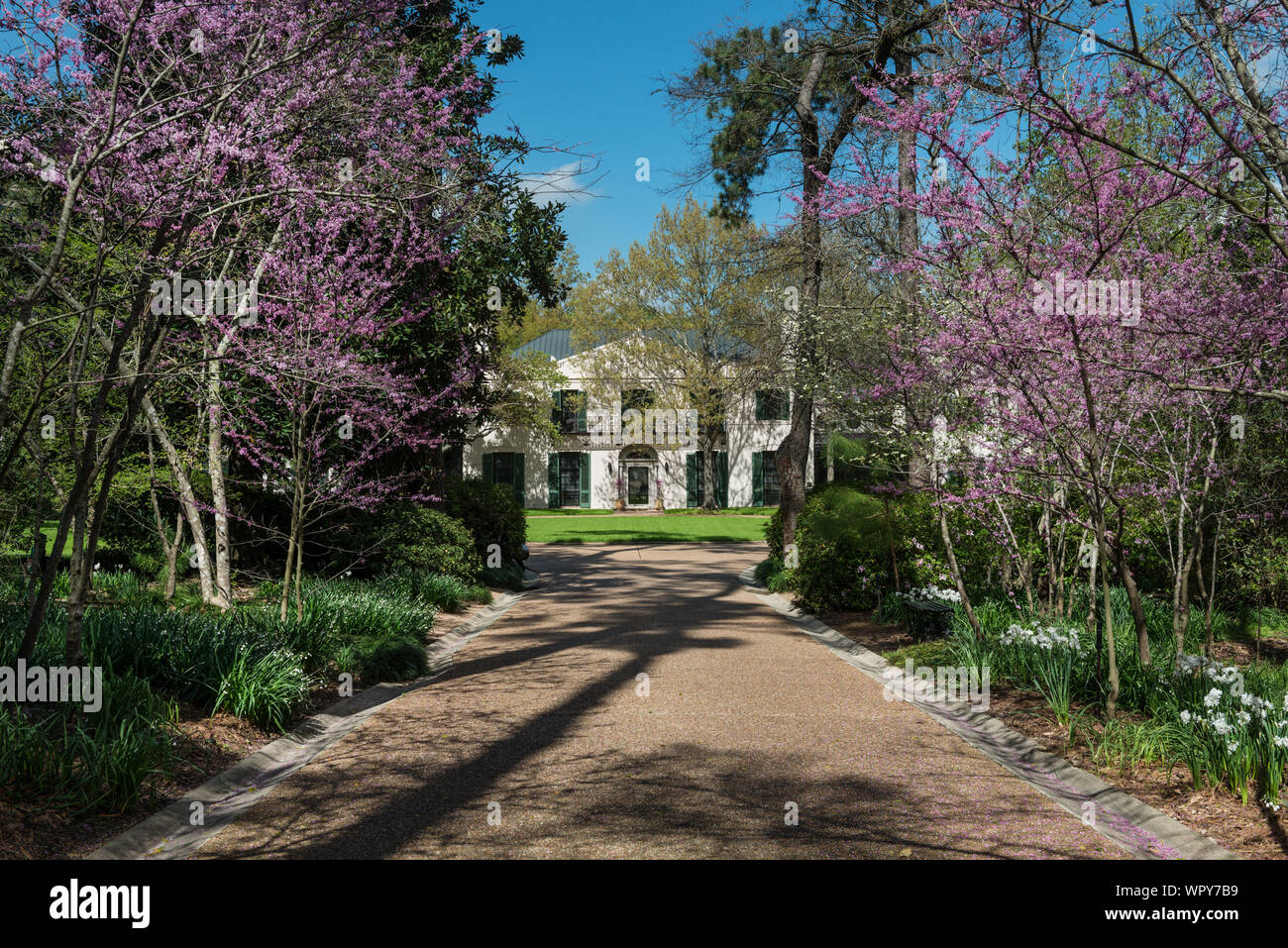 Mansion At The Bayou Bend Collection And Gardens In The River Oaks