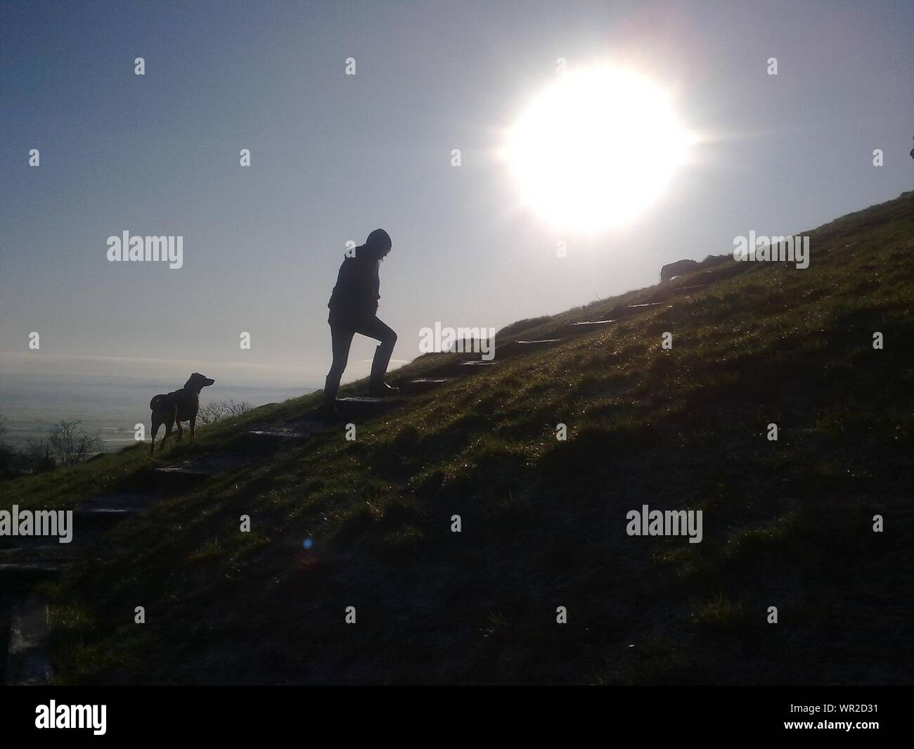 Silhouette Of Man With Dog Walking On Steps On Hill Stock Photo