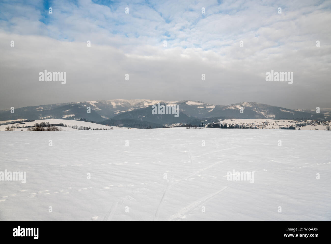 winter surrounding of Bukovec village in easternmost part of Czech republic with snow covered meadow, dispersed settlement of Bukovec village and hill Stock Photo
