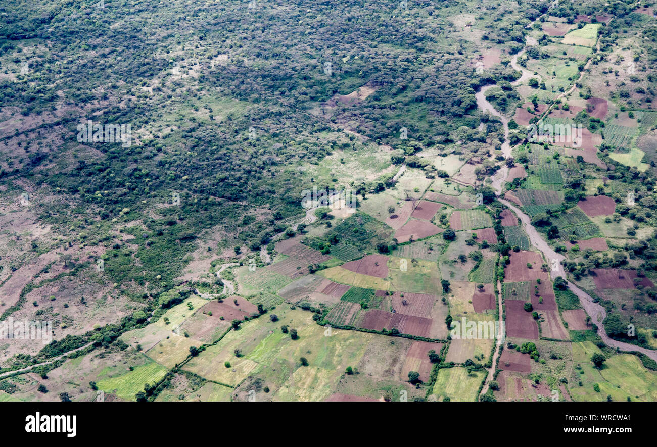 High aerial view of farms and forest in Ethiopia near Arba Minch. Stock Photo
