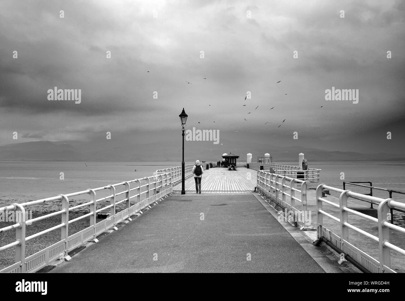 Beaumaris (Wales) in April. A pier on the sea, a street lamp, a person walking seen from behind, birds sensing the coming storm, dark clouds Stock Photo