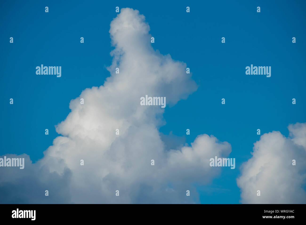 Orlando, Florida. August 31, 2019. Rabbit shaped cloud on bluelight sky background. Stock Photo
