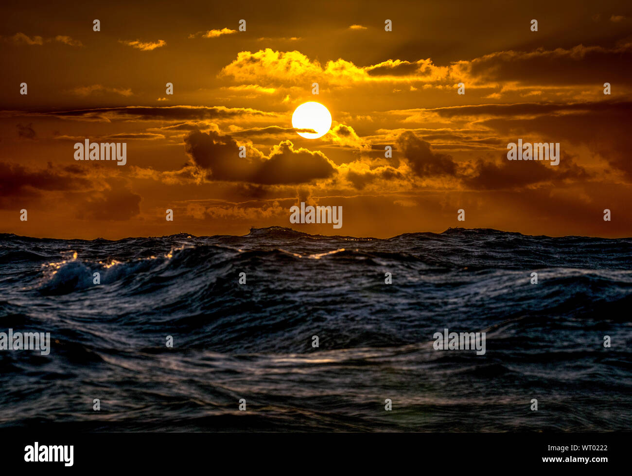 Sunrise in the North Pacific during the Transpac Race. Stock Photo