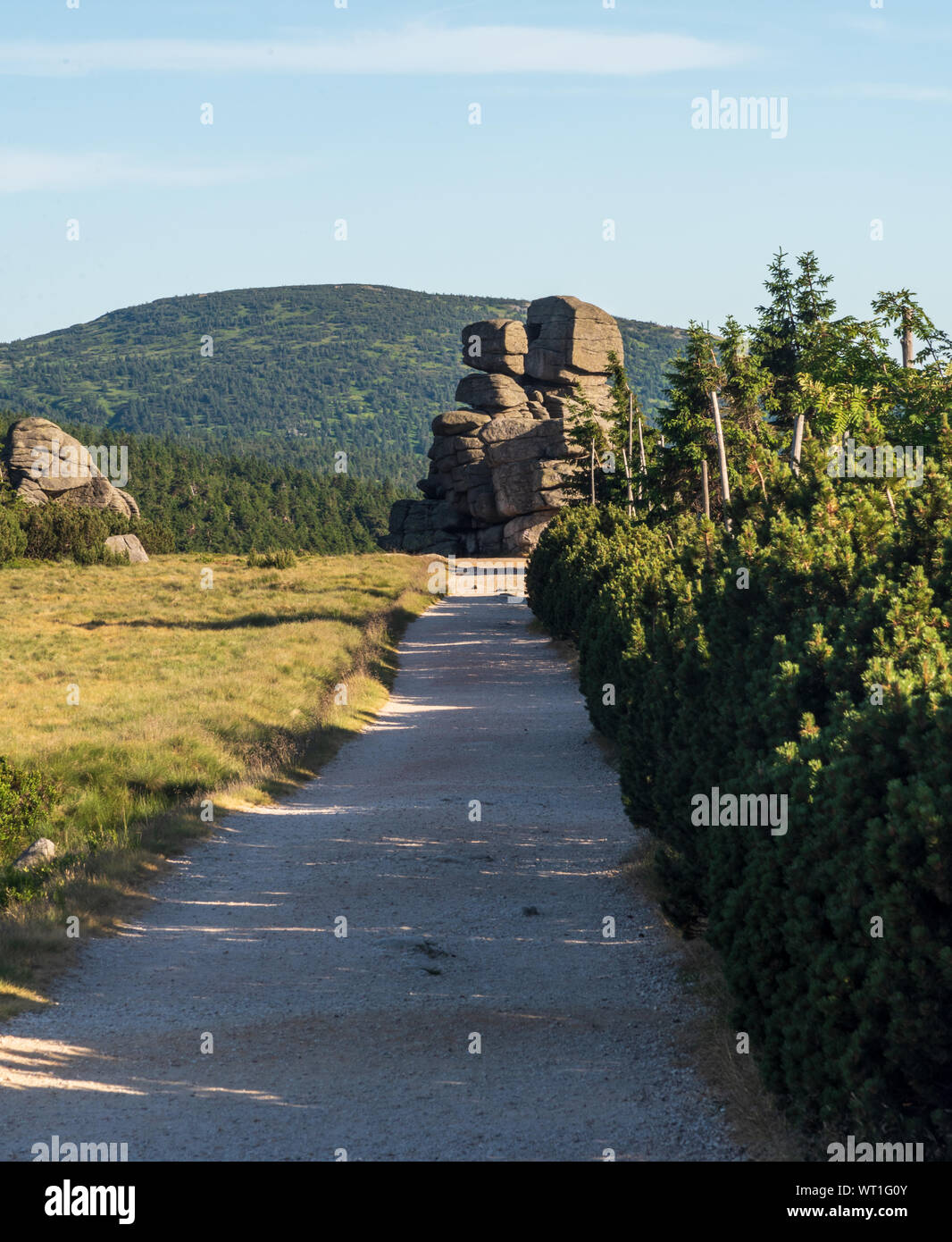 Svinske kameny rocks bellow Szrenica hill in Krkonose mountains on czech - polish borders during summer evening with clear sky Stock Photo
