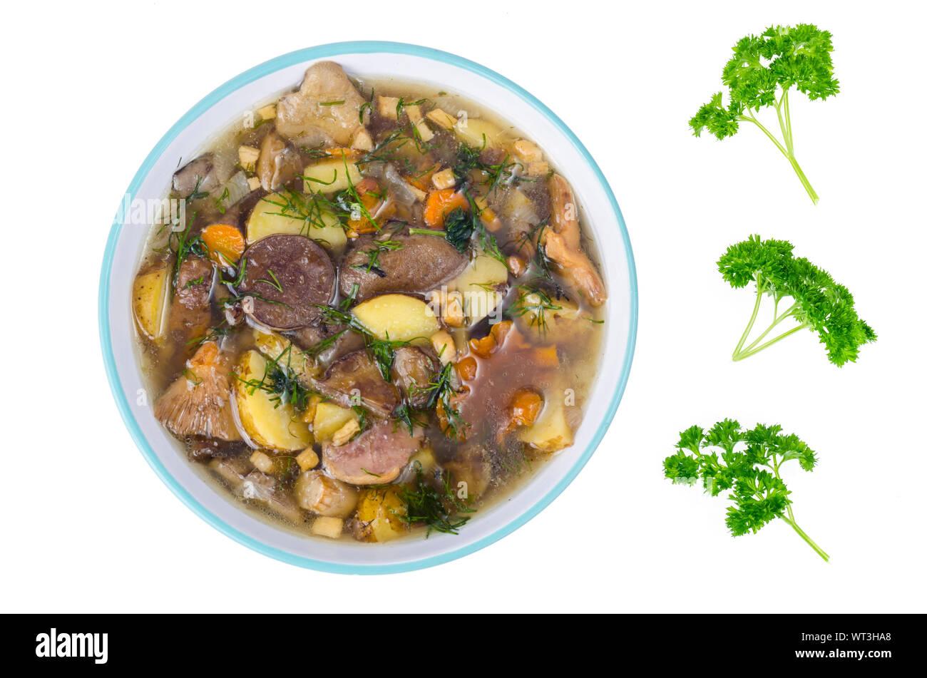Delicious seasonal wild mushroom soup. Studio Photo Stock Photo