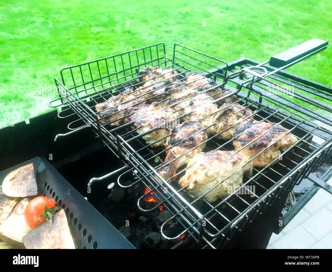Chunks of meat and vegetables are grilled. Studio Photo Stock Photo