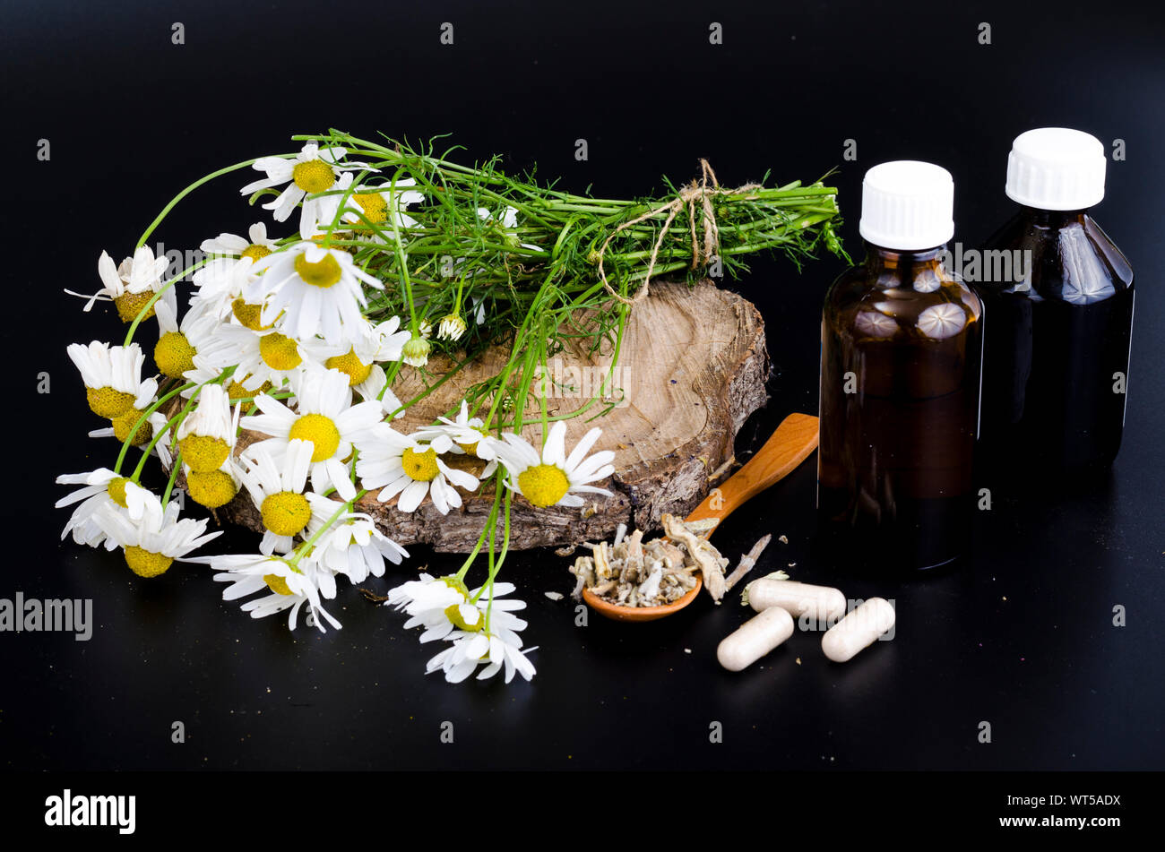 Herbal capsules and tinctures from medicinal plants. Studio Photo Stock Photo