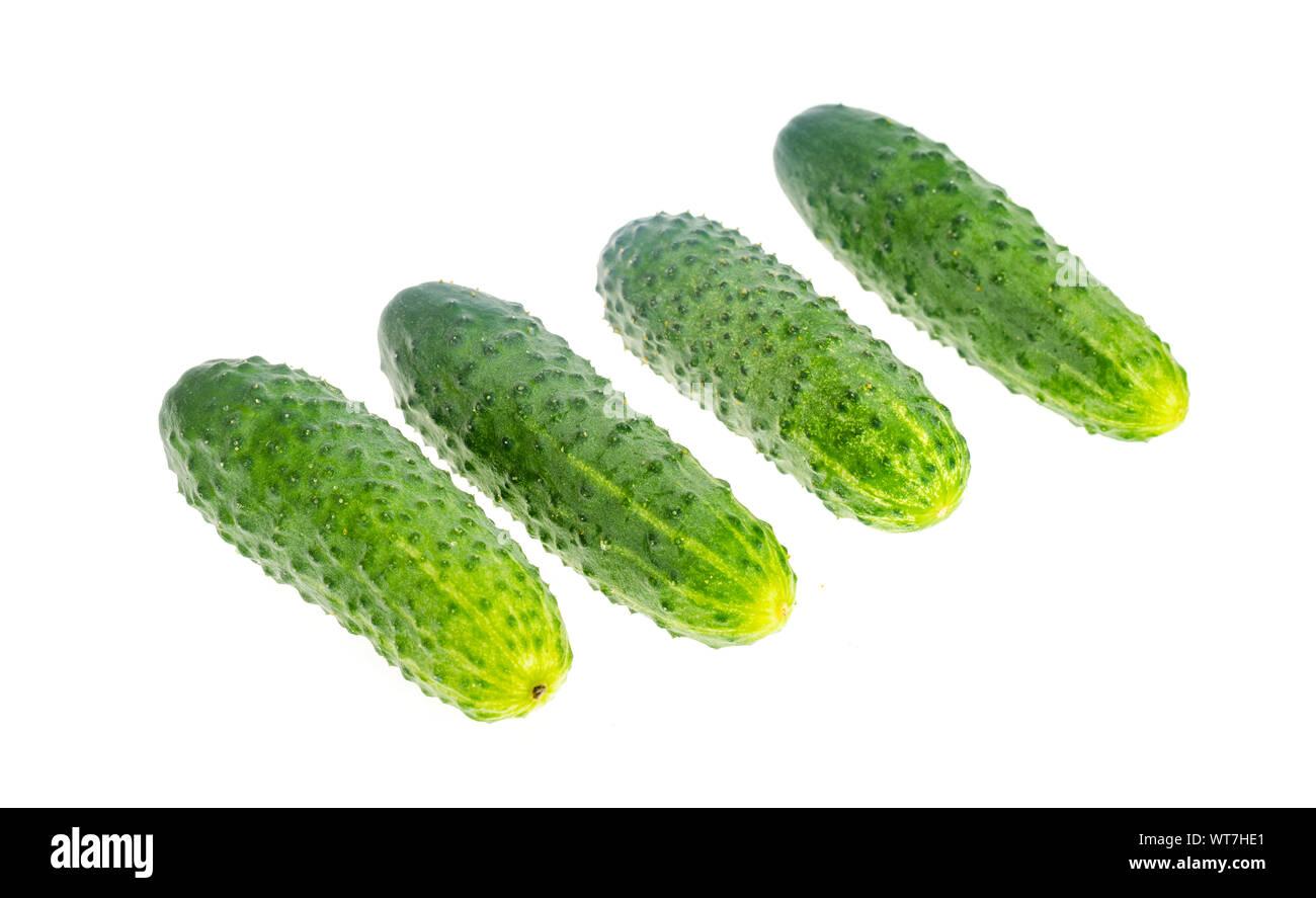 Bunch of fresh green cucumbers isolated on white background. Studio Photo Stock Photo