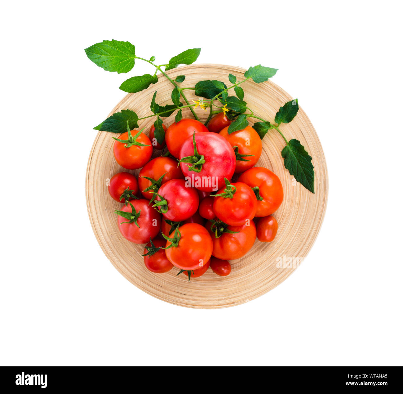 Wooden dish with different ripe tomatoes on white background. Studio Photo Stock Photo