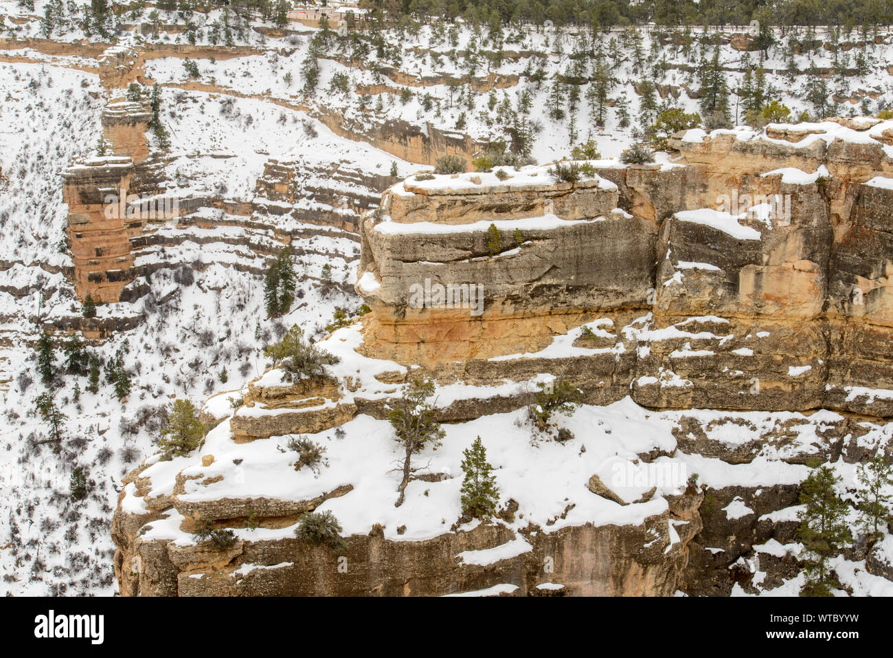 The Grand Canyon Bright Angel Trail And South Rim From