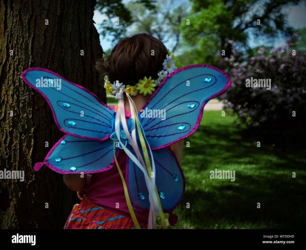 Rear View Of Girl Wearing Butterfly Costume By Tree Trunk Stock Photo