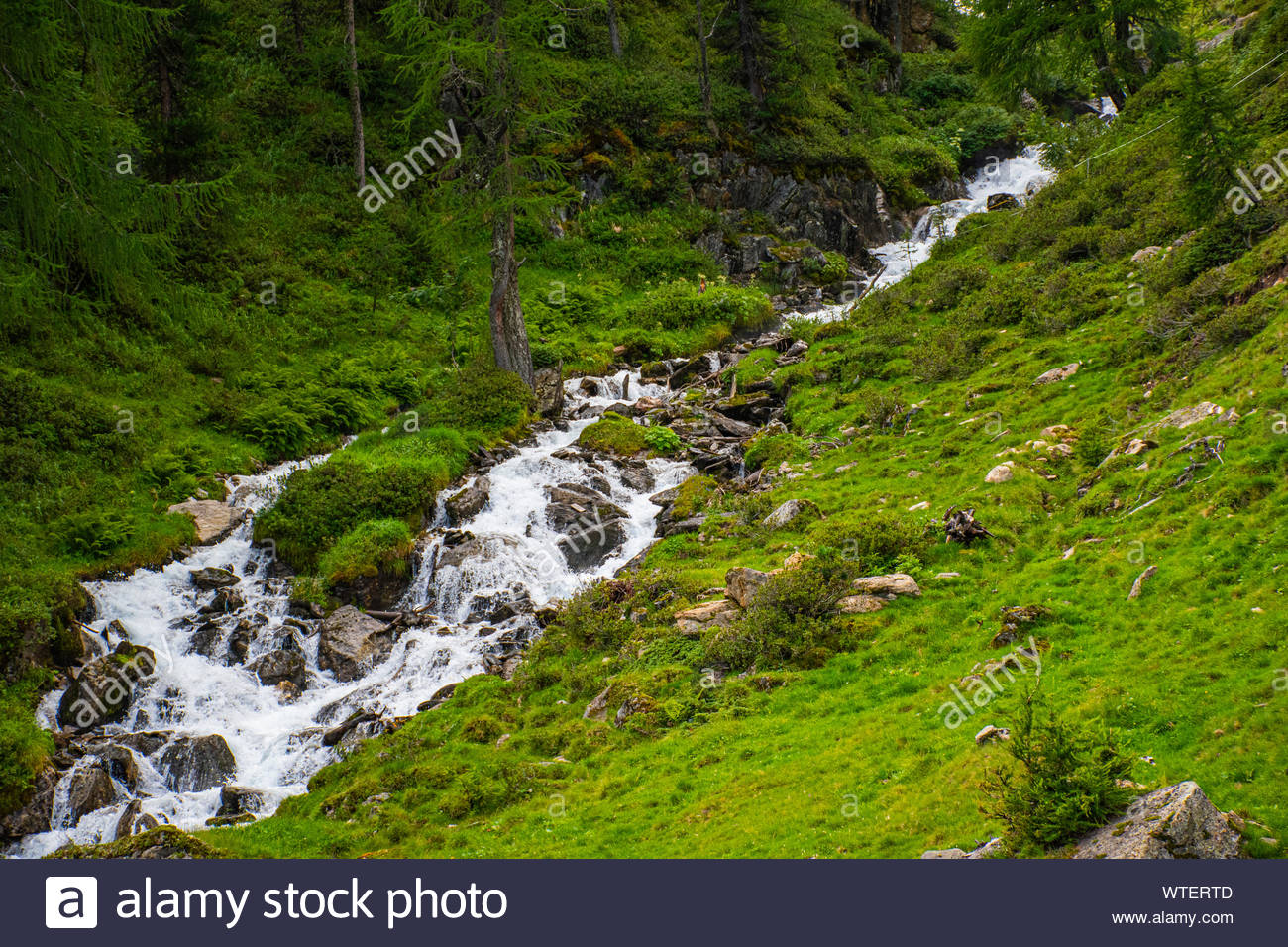 streams on the Alps of South Tyrol three Stock Photo