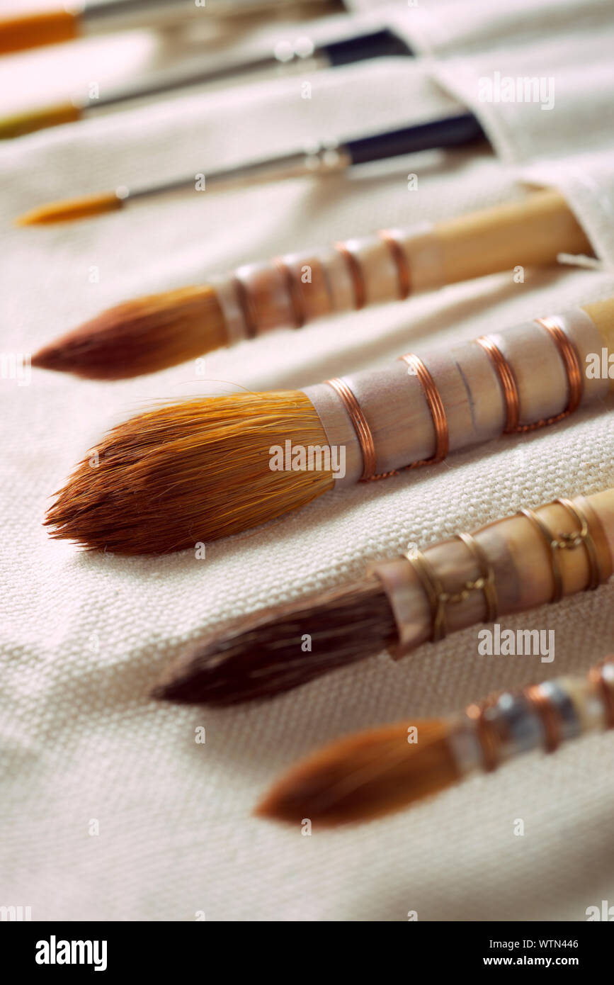 Paintbrushes on a cloth. Stock Photo