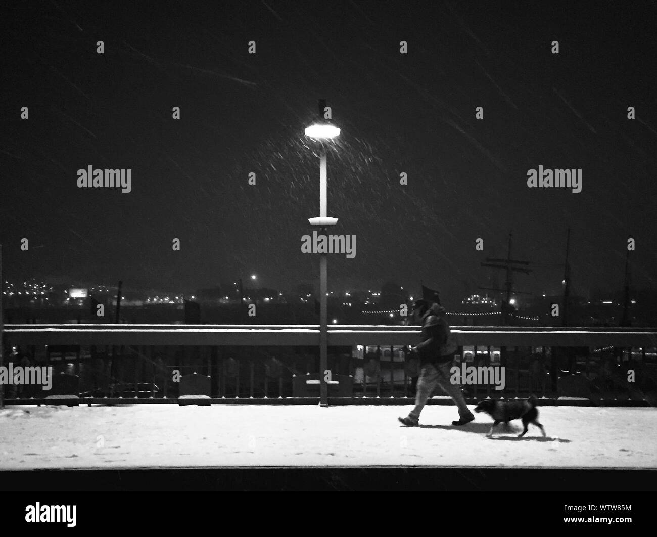 Magnificent Walking The Dog At Night Stock Photos Walking The Dog At Gmtry Best Dining Table And Chair Ideas Images Gmtryco