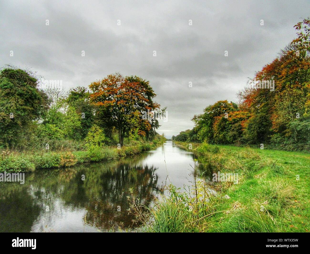 River Flowing Through Green Landscape And Trees Stock Photo