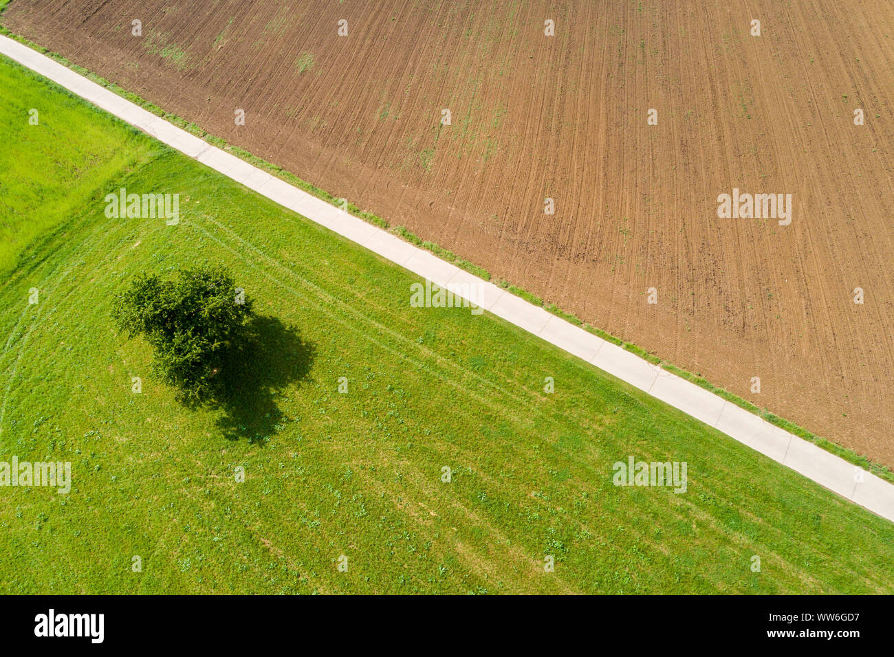 Aerial photograph, agricultural area, Schurwald, Ostalb, Baden Württemberg, Germany Stock Photo