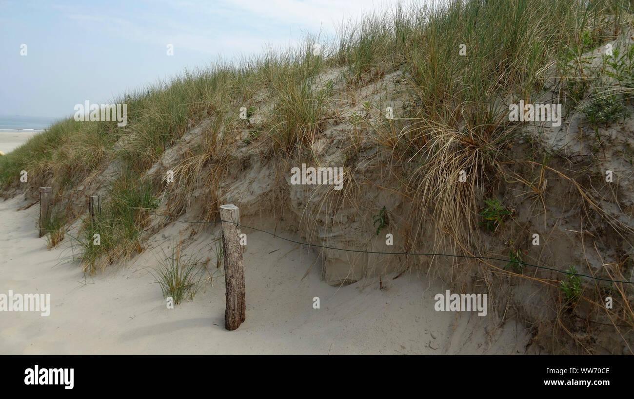 Dunes at the main beach, island Langeoog, East Frisian Islands, Lower Saxony, Germany Stock Photo