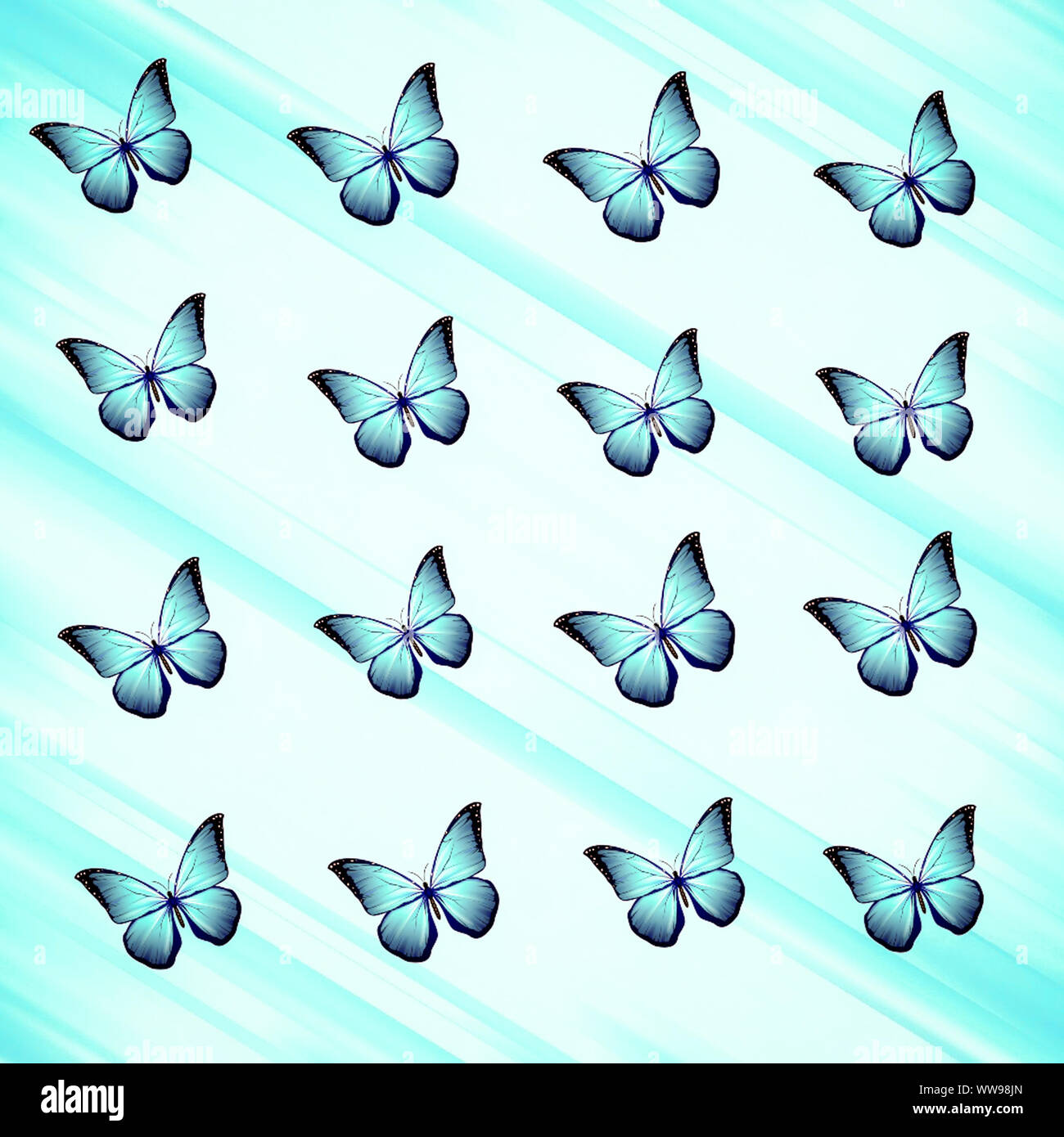 Beautiful Blue Butterfly Patternbest As Wallpapercover And