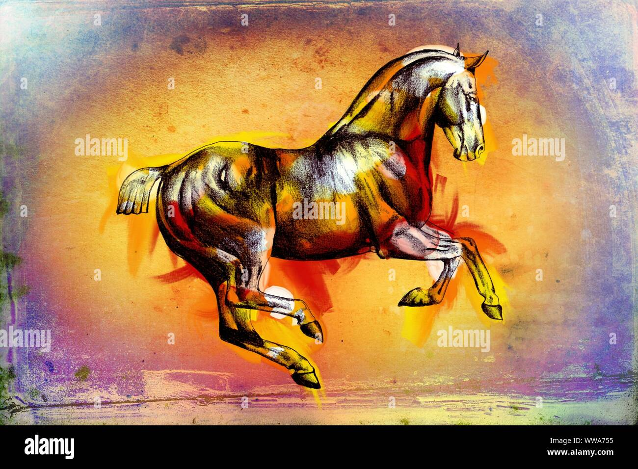 Original Oil Painting Of A Fine Arabian Horse Stock Photo Alamy