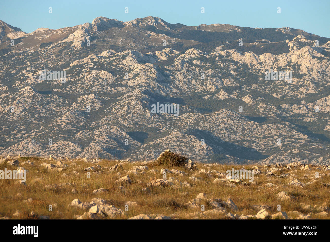 pasture on an island in front of a mountain Stock Photo
