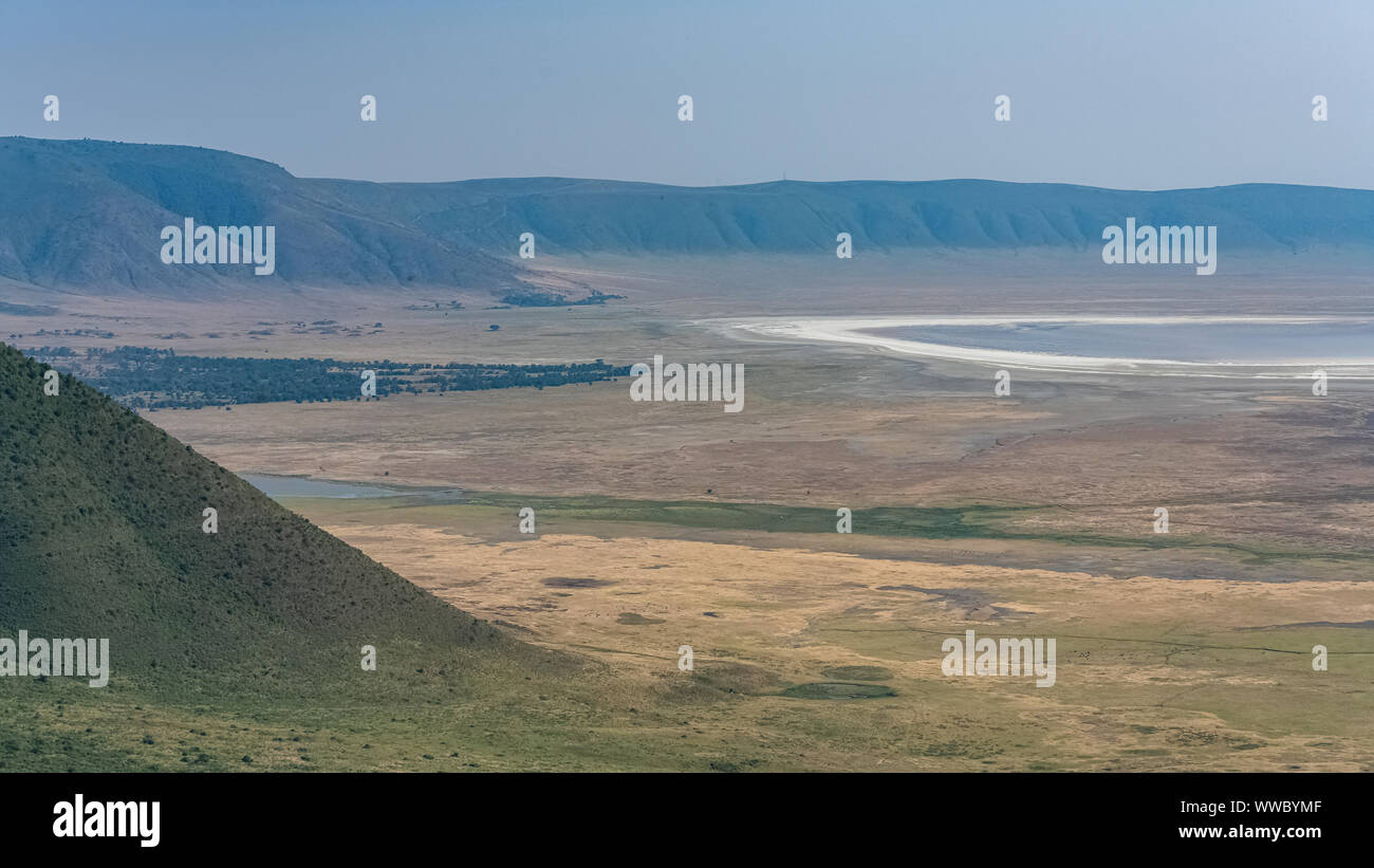 Tanzania, view of the Ngorongoro crater, beautiful landscape with different animals living together Stock Photo