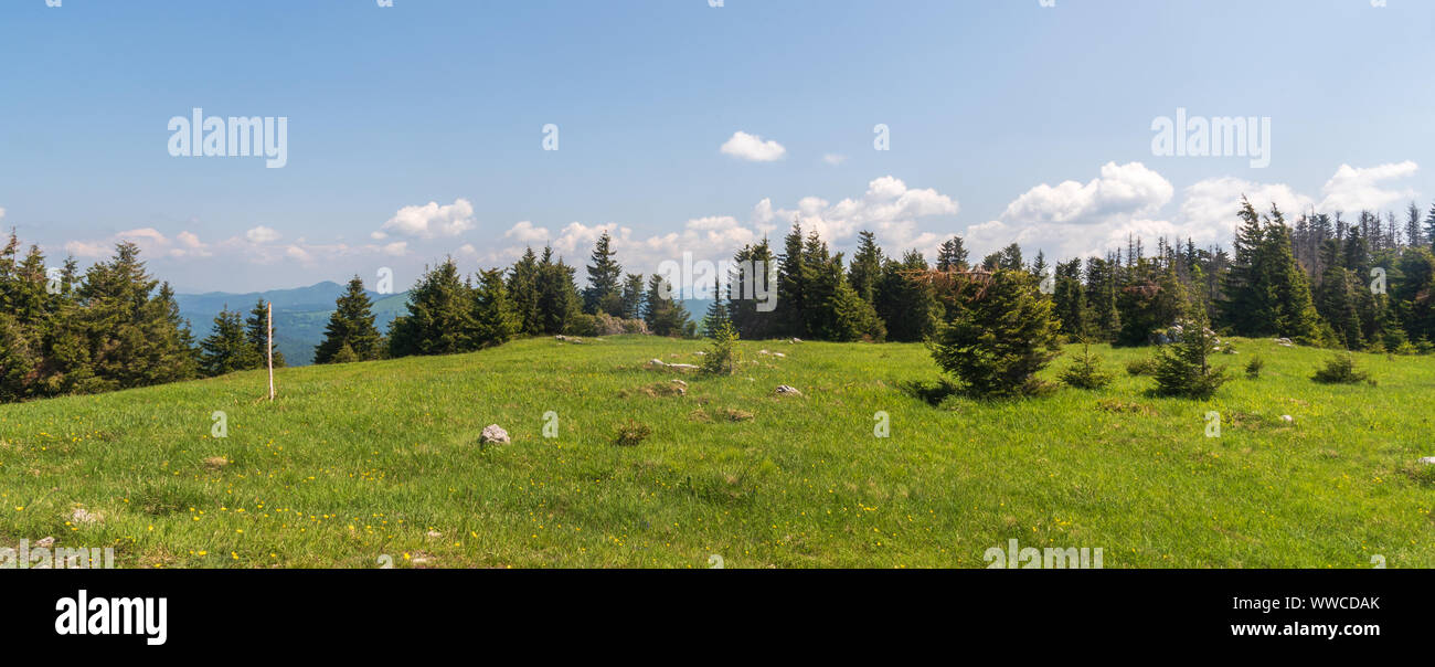 Tlsta hill summit in Velka Fatra mountains in Slovakia covered by meadow with trees during beautiful springtime day Stock Photo