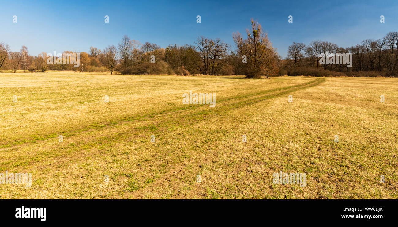 early springtime meadow with trees around, footpath and clear sky in early spring CHKO Poodri in Czech republic Stock Photo