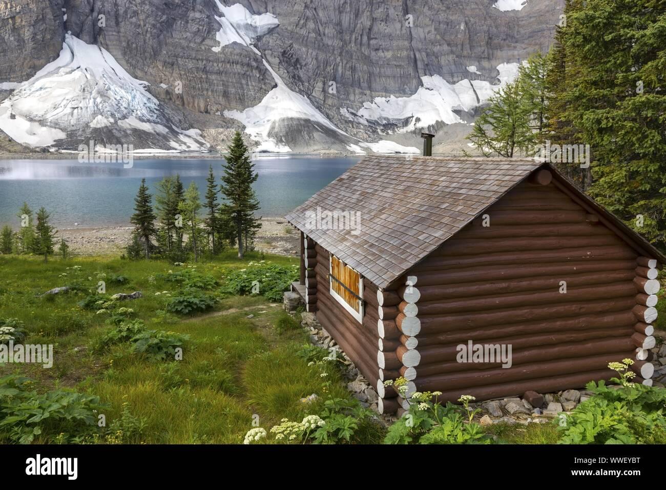 Heritage Landmark Log Cabin on a Green Alpine Meadow near Floe Lake on a great Summertime Hiking Trail in Kootenay National Park Canadian Rockies Stock Photo