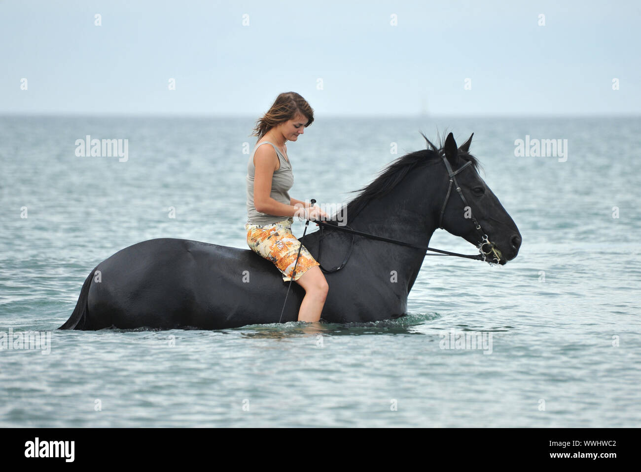 Beautiful Black Horse In The Sea And Beautiful Woman Stock Photo Alamy