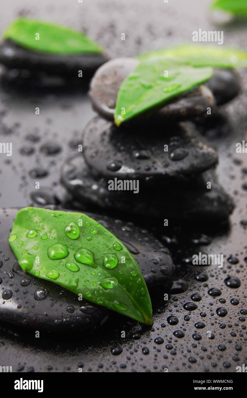 Wellness Concept With Zen Stone And Green Leafs Stock Photo Alamy