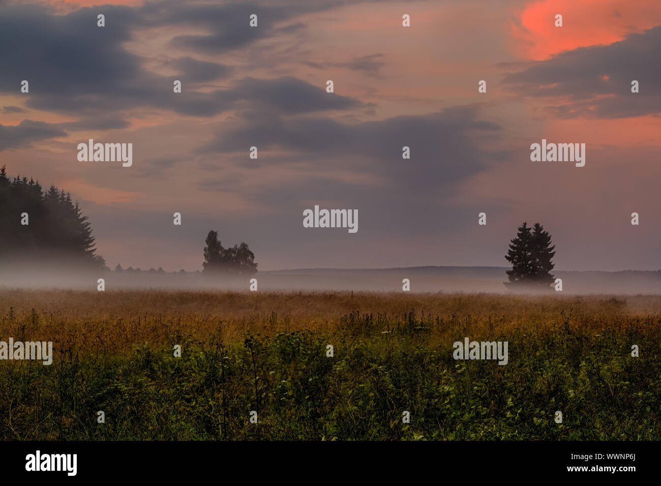 Evening sky with resin landscape Stock Photo