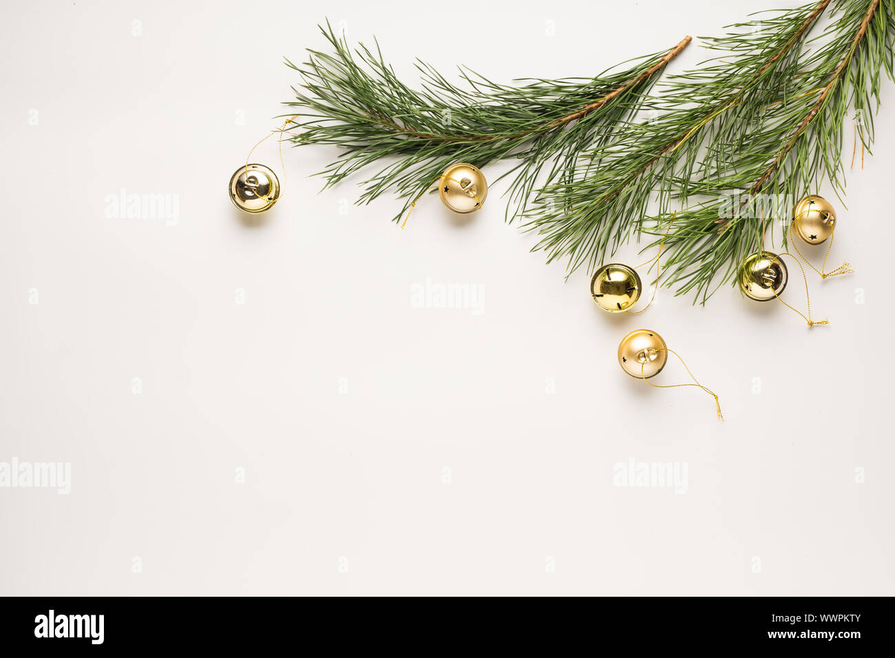 christmas tree branches, business cards, pine cones, flat lay, fir tree, merry christmas, branches cones, rose hips Stock Photo